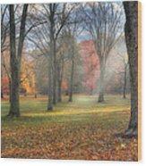 A November Morning Wood Print
