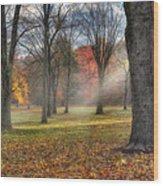 A November Morning Square Wood Print