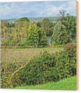 A Painter Landscape Wood Print by Olivier Le Queinec