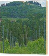 A Painting A Tuscan Vineyard And Villa Wood Print