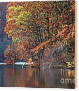 A Painting Barney's Autumn Pond Wood Print
