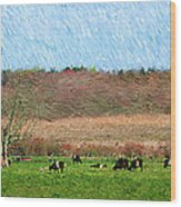A Painting Cows Grazing And Newport Bridge Wood Print