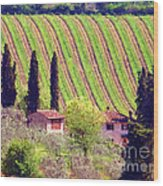 A Painting Tuscan Vineyard Wood Print