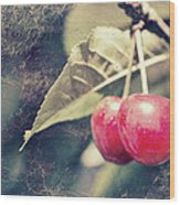 A Pair Of Cherries Wood Print
