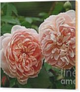A Pair Of Colette Roses Wood Print