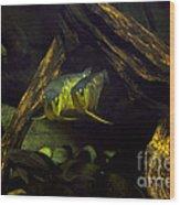 A Pair Of Fish Wood Print