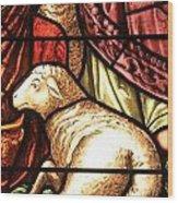 A Pair Of Lambs Wood Print