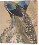 A Pair Of Peacocks In Spring Wood Print