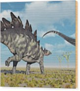 A Pair Of Stegosaurus Dinosaurs Wood Print