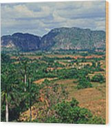 A Panoramic View Of The Valle De Wood Print