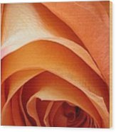A Pareo Rose Wood Print