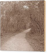A Path In Life Wood Print