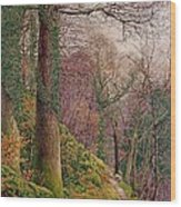 A Path In The Wood Wood Print