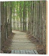 A Path To... Wood Print