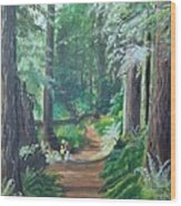 A Peaceful Walk In The Redwoods Wood Print