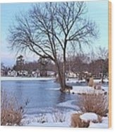 A Peaceful Winter Day Wood Print