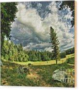 A Peacful Yosemite Day Wood Print