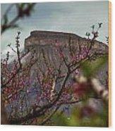 A Peak At Mt. Garfield Wood Print
