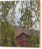 A Peak Of Fall Red Barn Wood Print