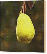 A Pear Tree Wood Print