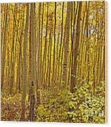A Peek Into Heaven Wood Print