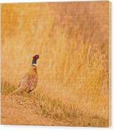 A Pheasant  Wood Print