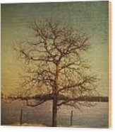 A Pictorialist Photograph Of A Lone Wood Print by Roberta Murray