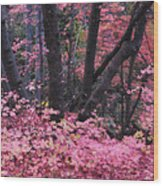 A Pink Autumn  Wood Print