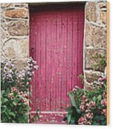 A Pink Door Wood Print by Olivier Le Queinec