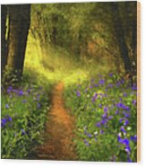 A Place In The Sun - Impressionism Wood Print
