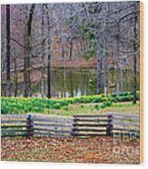 A Place Of Peace Among The Daffodils Wood Print