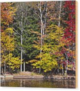 A Place To Relax In The Adirondacks Wood Print