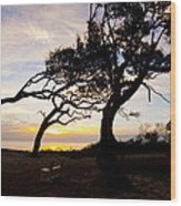 A Place To Watch The Sunrise Wood Print