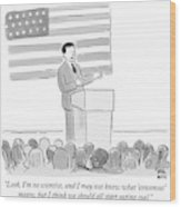 A Politician Delivers A Campaign Speech Wood Print