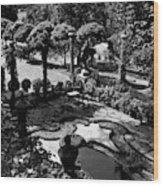 A Pond In An Ornamental Garden Wood Print