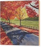 A Quiet Autumn Road Wood Print