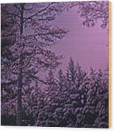 A Quiet Snowy Night Wood Print