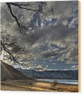 A Quiet Time Wood Print