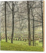 A Rainy Day At The Cemetery Wood Print