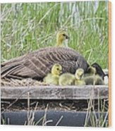 A Real Mother Goose Wood Print