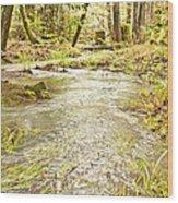 A River Of Green Wood Print