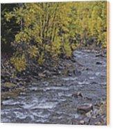 A River Runs Through It Wood Print