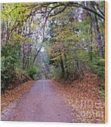A Road In Autumn. Wood Print