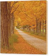 A Romantic Country Walk In The Fall Wood Print