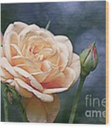 A Rose Is A Rose... Wood Print