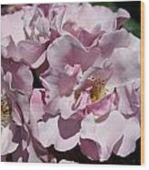 A Rose Named Blueberry Hill  Wood Print