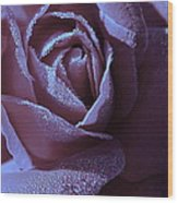 A Rose That Glitters Wood Print