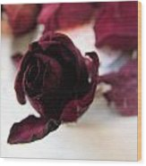 A Rosey View Wood Print