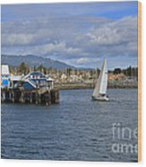 A Sailing Yacht Passes The Wharf In Sidney Harbour Wood Print
