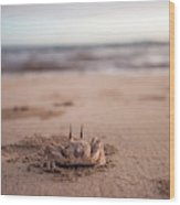 A Sand Crab Looks Out Over The Andaman Wood Print